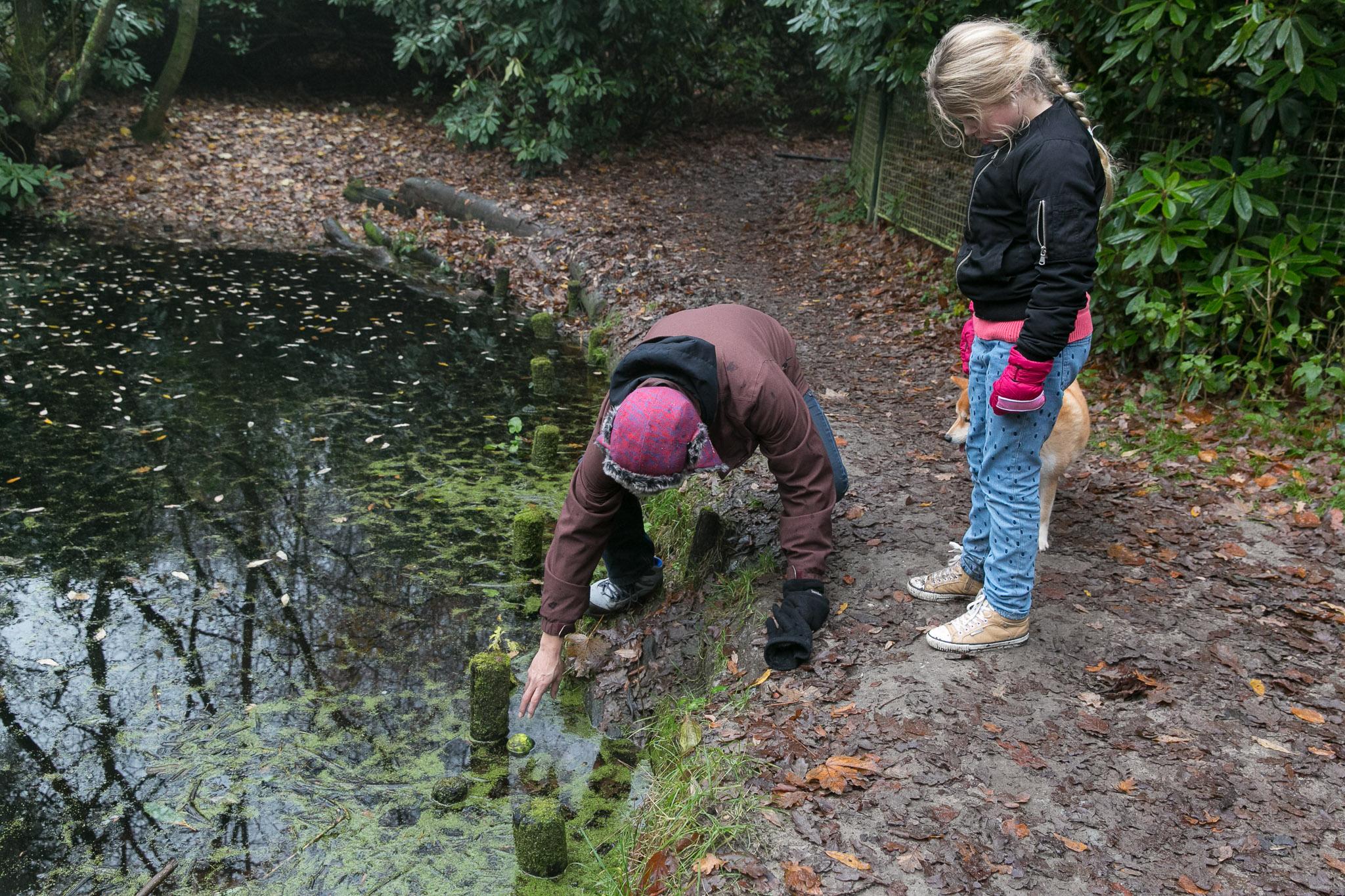 Met de familie wandelen in het bos tijdens een Day in the Life reportage in Haarlem